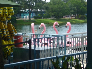 flamingo-boats